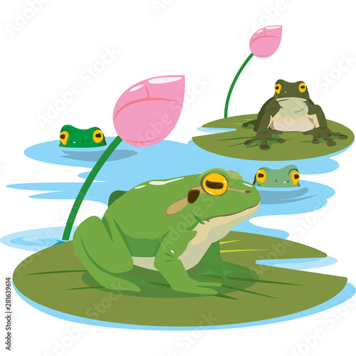 Tablou Canvas green frog in different pose. Vector illustration.