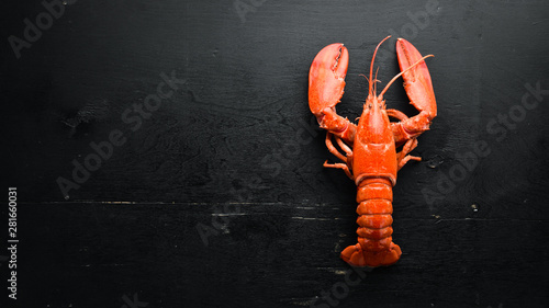 Fotografie, Obraz Boiled lobster on black background. Top view. Free copy space.