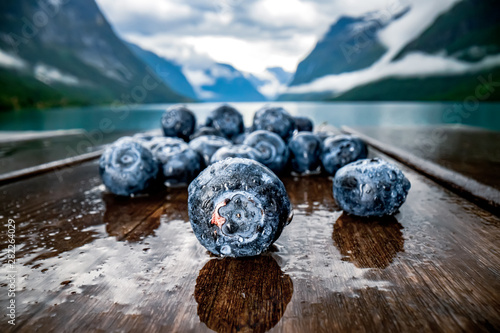 Canvas Print Blueberry antioxidants on a wooden table on a background of Norwegian nature