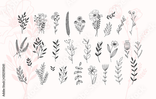 Canvas Print minimalistic flower graphic sketch drawing, trendy tiny tattoo design, floral bo