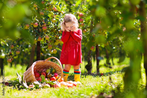 Photo Kids picking apples on farm in autumn.