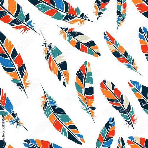 Fotografie, Obraz Colored feathers pattern