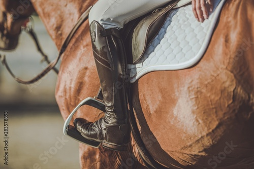 Horse Riding Stirrups Fototapet