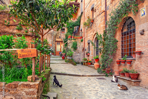 Fotografia Beautiful alley in Tuscany, Old town, Italy
