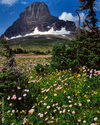 Fotografie, Obraz USA, Montana, Glacier National Park