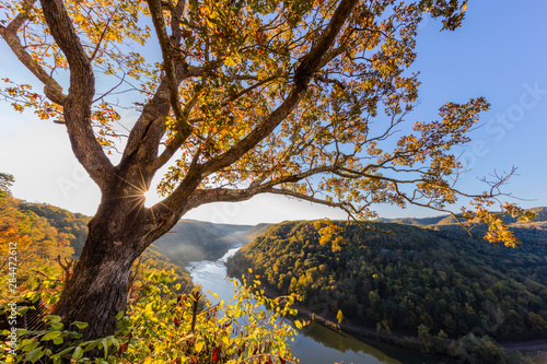 Slika na platnu Sunrise filtering into the New River Gorge at Hawks Nest State Park in Ansted, W