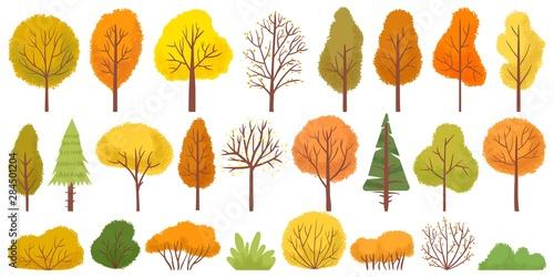 Stampa su Tela Yellow autumn trees