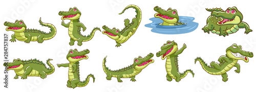 Canvas Print crocodile vector set graphic clipart design