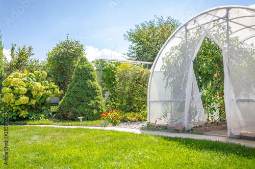 Obraz na płótnie greenhouse with vegetables in private garden in back yard