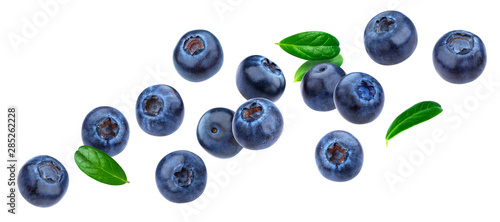 Obraz na plátne Blueberry isolated on white background with clipping path