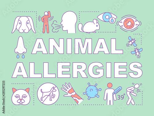 Fényképezés Animal allergies word concepts banner