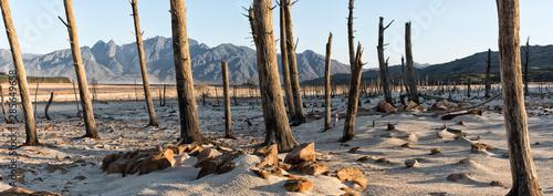Obraz na płótnie Drought