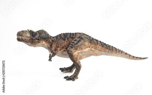 фотография Gorgosaurus Dinosaur on white background