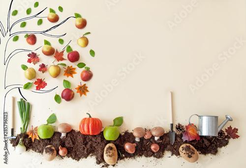 Fotografia, Obraz Autumn organic fruit and vegetable garden