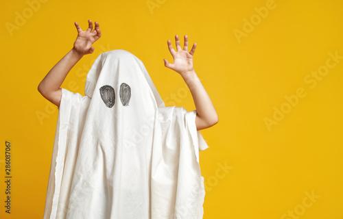 Fotografia, Obraz kid in ghost costume