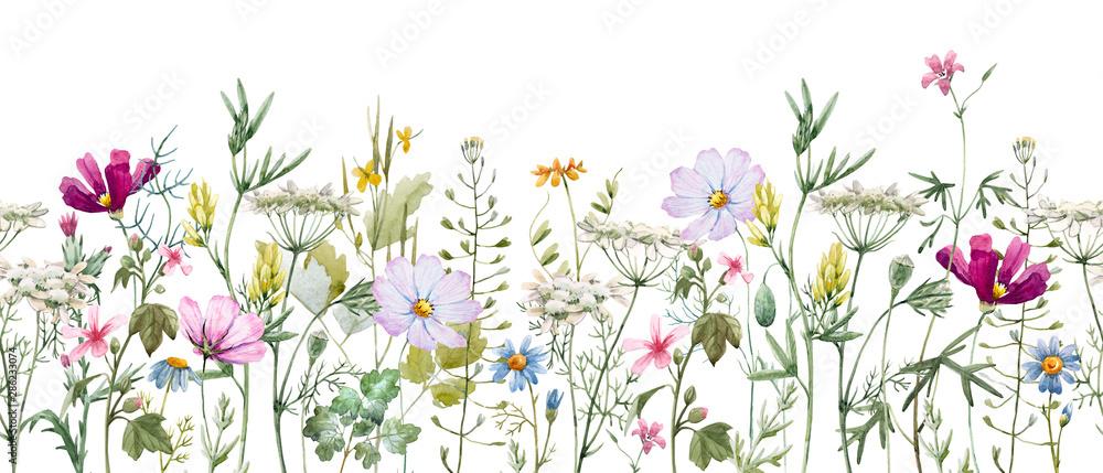 Fototapeta Akwarela kwiatowy wzór