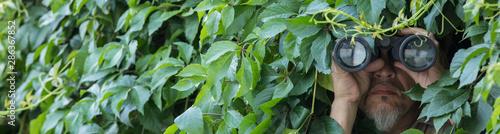 Tableau sur Toile man looks through binoculars in the leaves