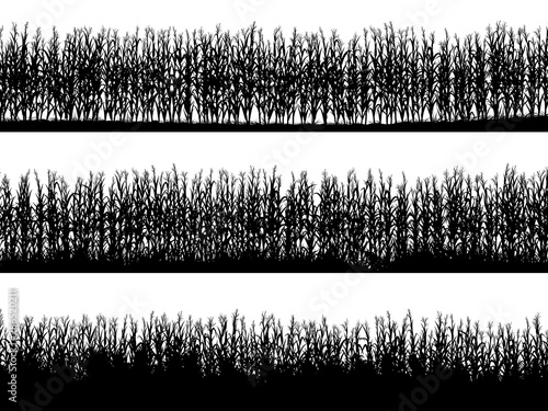 Canvas Print Horizontal banners of field silhouettes with corn.
