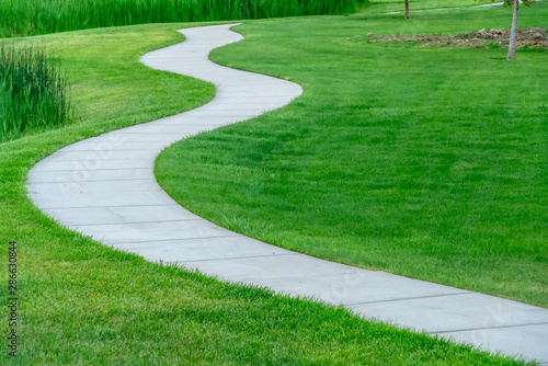 Canvas Print Close up of a pathway winding though a terrain covered with short vivid grasses