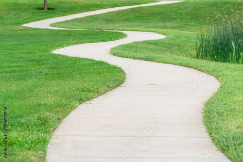 Canvas Print Outdoor scenery with a pathway winding through a terrain covered with grasses