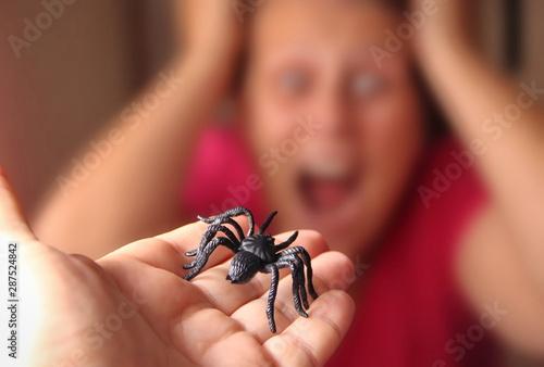 Spider in a hand, Arachnophobia Fototapeta