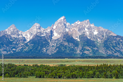 Fotografiet Panoramic photograph of the Grand Teton mountain range in summer with a pine tree forest, Grand Teton National Park, Rocky Mountains, Wyoming, United States of America (USA)
