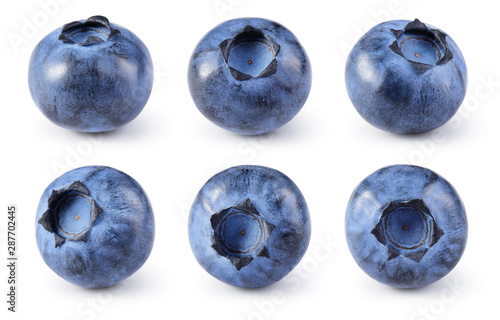 Fototapeta Blueberry isolated