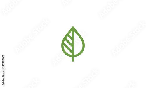 Canvas Print green leaf logo
