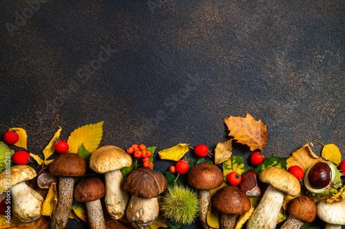 Obraz na płótnie Autumnal background
