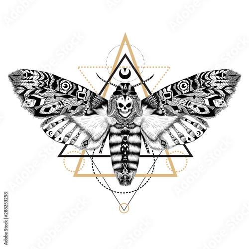 Fotografia Textured moth in aztec style