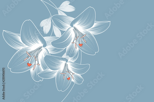 Fotografia Abstract  hand drawn floral pattern with lily flowers