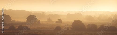 Obraz na płótnie Swanton View