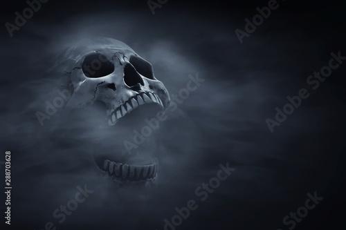 Naklejka na szafę Ludzka czaszka na ciemnym tle