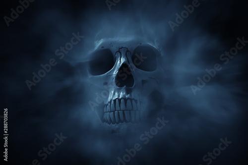 Leinwand Poster Human skull on dark background