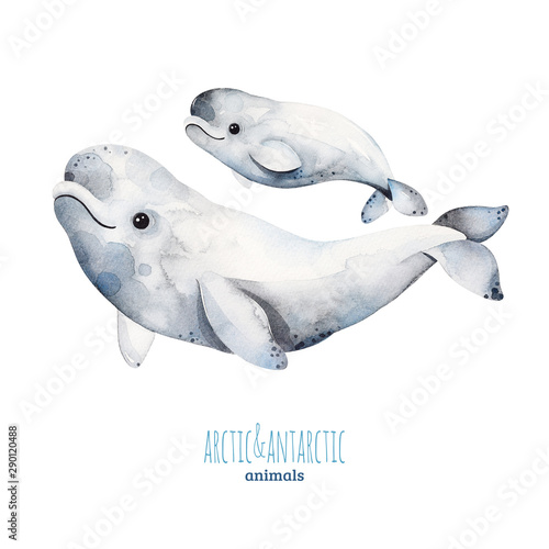 Foto Watercolor set with cute mother and baby beluga whales