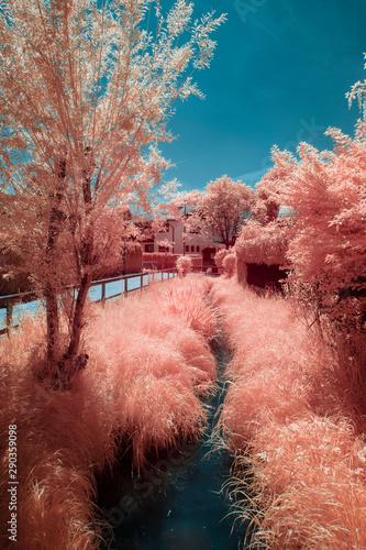 Canvas Print Park landscape in the city Salzburg in spring, shot in Infrared IR