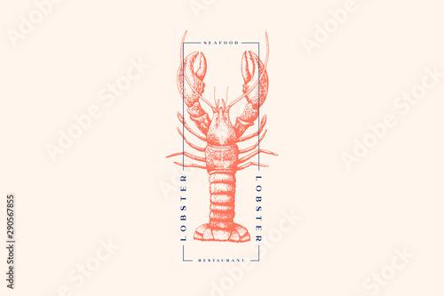 Fototapeta Graphically drawn lobster