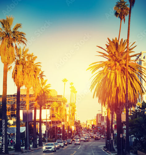 Fototapeta Colorful sunset in Hollywood