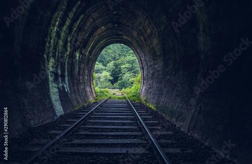 Canvas-taulu Demodara railway tunnel, Ella, Sri Lanka