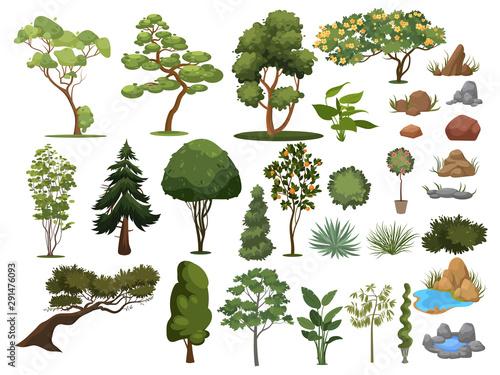 Photo Set of trees and shrubs