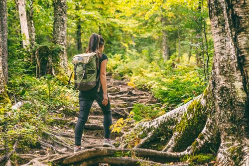 Fototapeta Forest hike trail hiker woman walking in autumn fall nature background in fall season