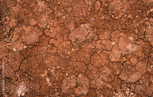 Fotografia Texture of dried cracked clay