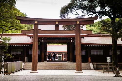 Obraz na płótnie Wooden Torii gate of Meiji Jingu Shrine under big tree in Tokyo.