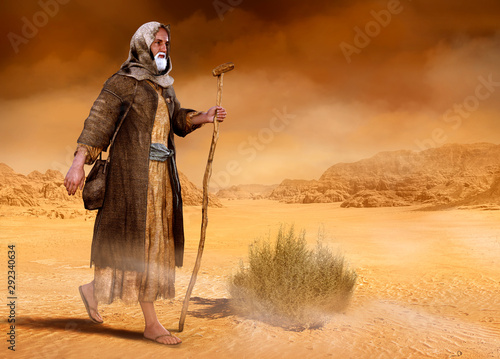 Fotografie, Obraz Moses walks through Sinai desert Exodus