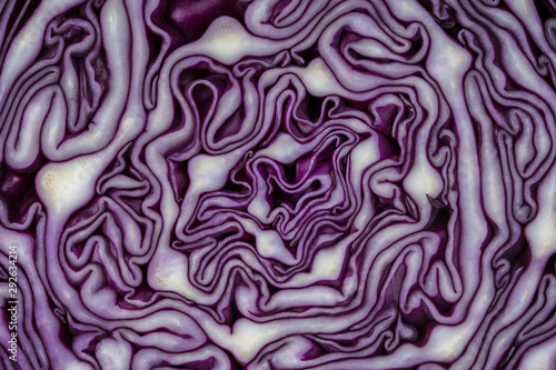 Fotografia Background of the blue cabbage in the cut