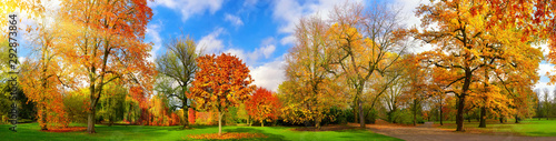 Kolorowa parkowa panorama w jesieni