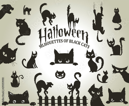 Fotografia Halloween decorative silhouettes of black cats