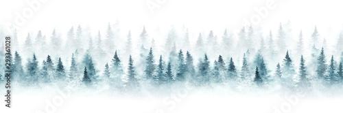 Wzór z mglisty świerkowy las. Jedlinowi drzewa odizolowywający na białym tle.
