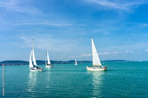 Fotografie, Obraz Sail Boats on the blue Lake Balaton Hungary