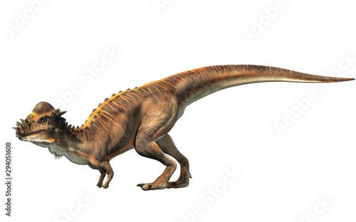Carta da parati A brown Pachycephalosaurus on a white background